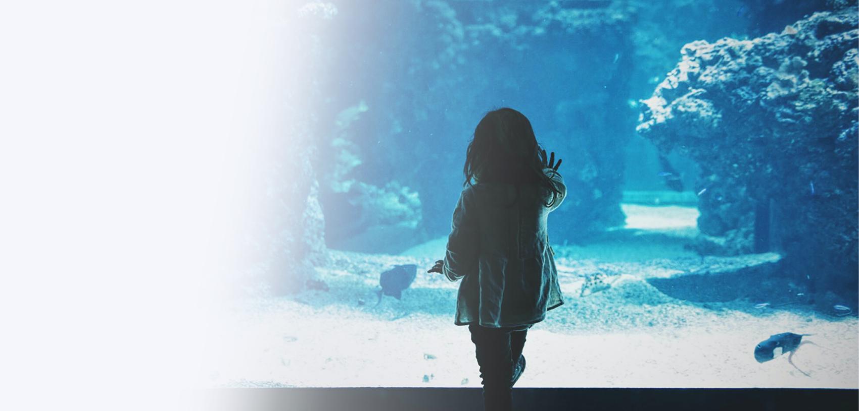 Child in Aquarium